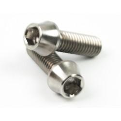 Skruv M5x20 insex titan (2st)