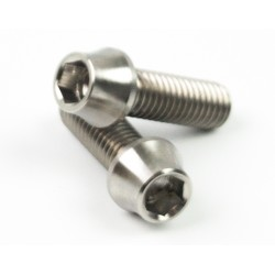 Screw M6x20 insex titanium (2pcs)